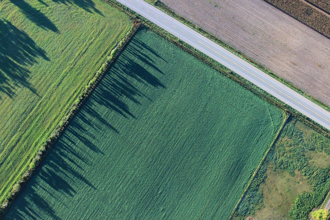 Оцінка земельної ділянки